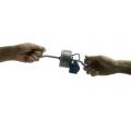 小型強力電磁鐵