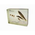 魚的發育封膠標本