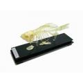 魚骨骼標本