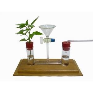 植物蒸散作用實驗器