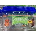 生物觀察箱(小)