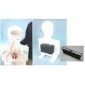 電動可提式人型心臟及血液循環模型(附箱)