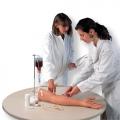 靜脈注射用手臂模型