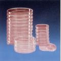 滅菌塑膠培養皿