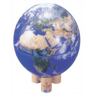 衛星地球儀