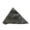 蕨葉自然化石