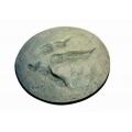 恐龍足印化石複製品