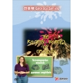 地質學 全套6片DVD