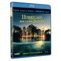海灣上的颶風 全套1片DVD